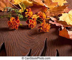 Tagetes flowers bouquet on wooden table