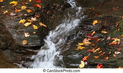 Autumn Flume Loop - Water flows through a rock channel with...