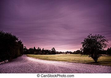 Purple road - Nature path in a purple colored landscape