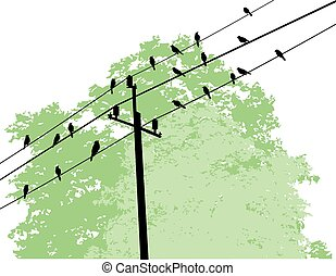 Birds - vector birds on wire and tree background