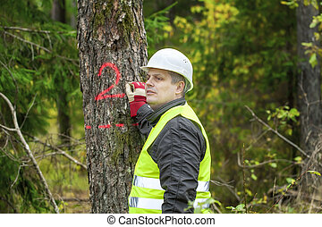 Lumberjack write on tree in forest