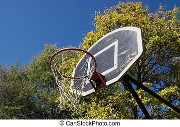 Basketball Dunk - Basketball dunk in a park with trees in...