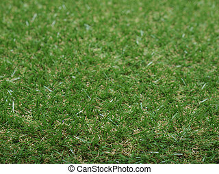 Synthetic grass - Green synthetic grass useful as a...