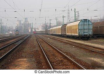 Railway - Many railway tracks with freight wagons