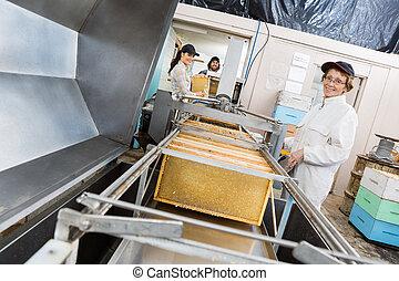 Portrait Of Beekeeper Working On Honey Extraction Plant