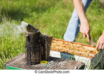 Bee Smoker With Apiarist Working On Farm - Bee smoker with...