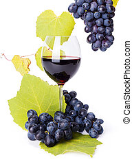 Glass of red wine with blue grape clusters along leaves