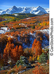 Dallas Divide - Scenic landscape of Dallas divide in autumn...