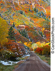 Rural road near Ridgeway Colorado - Scenic rural road near...
