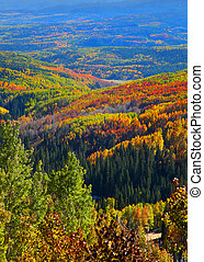Autumn in Ohio pass, Colorado - Colorful rolling hills near...