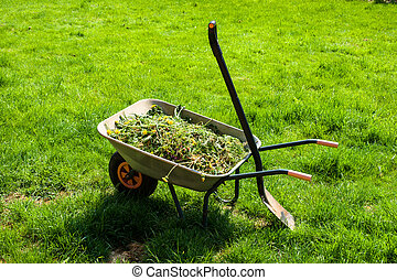 carrinho de mão, gramado