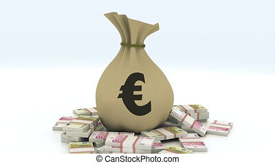 Bag with money, euro, isolated with alpha channel