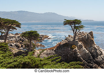 California Coast near Carmel