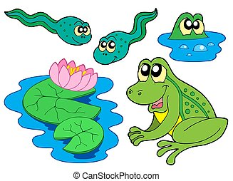 Frog collection on white background - isolated illustration.