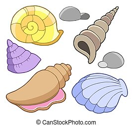 Sea shells collection - isolated illustration.