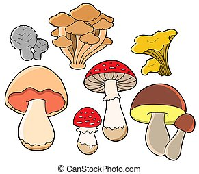 Vário, fungos, cobrança