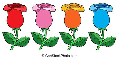 Various color roses collection