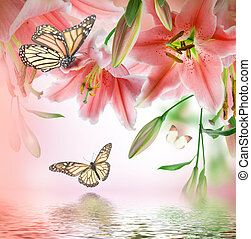 Multi-colored lilies and butterfly on a dark background