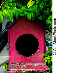 Empty birds nest box
