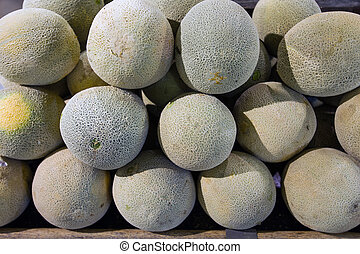 Melon in food store