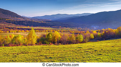 Golden autumn in Bukovets village. Transcarpathia, Ukraine,...