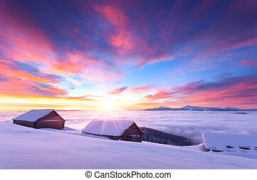 Colorful winter sunrise in the Carpathian mountains. Glade...