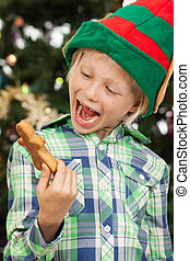Laughing elf looking at gingerbread man