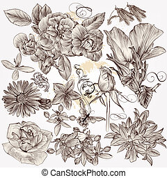 Collection of vector hand drawn detailed flowers for design...