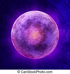 Human Egg Cell - Human egg cell medical symbol as a three...