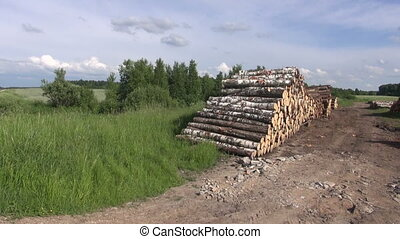 wood timber logs stacks on field