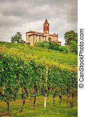 área, viejo, escénico, viñas, piemont, iglesia, Italia,...