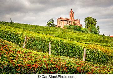 paisaje, escénico, vista, viñas, viejo,...