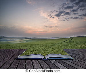 Creative concept pages of book Landscape across fresh wheat field at sunrise in Summer