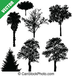 Various trees on white - Various drawing of the trees on...