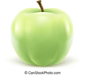 Greeen apple isolated on white background - EPS10 vector...