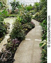 Interior of a tropical greenhouse or hot-house at a public...