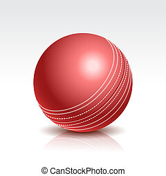 Vector Illustration of a Cricket Ball