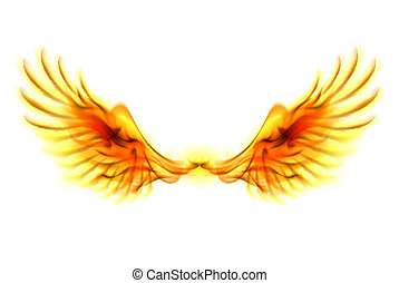 Fire wings. - Illustration of fire wings on white...