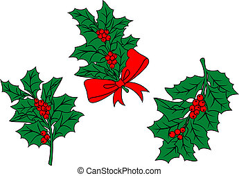 Christmas holly branch