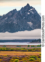 Willow Flats - Grand Teton - Grand Teton Peaks covered in...