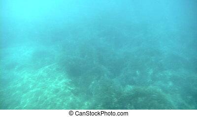 sea under