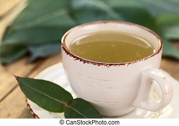 Eucalyptus Tea - Freshly prepared hot tea made of Eucalyptus...