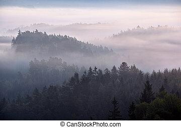 foggy dawn over the Bohemian Switzerland - foggy dawn over...