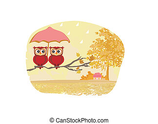 Owls couple under umbrella, autumn rainy day