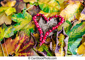 Love Autumn - Colorful autumn leaves with heart made of...