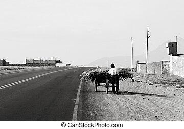 Cart Labor - Pushing a cart of corn in Peru along an...