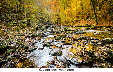 River - Beautiful river with cascades in autumn...