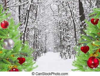 snowed forest with decorated evergreen trees - way in snowed...