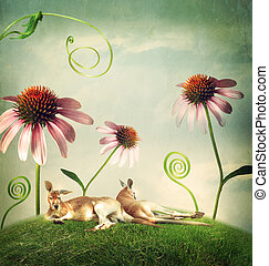 Kangaroo couples napping under flowers - Kangaroo couples...