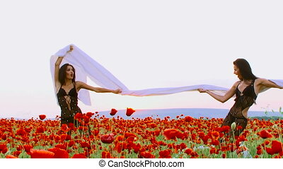 In a poppy field - Two women posing for camera in a poppy...